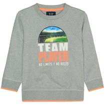 Sweatshirt TEAM PLAYER - Stone Grey Melange